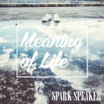 [MUSIC VIDEO] SPARK SPEAKER – Meaning of Life (2018/MP4/RAR)