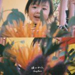 [Single] Hump Back – 涙のゆくえ (AAC/256KB)