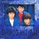 [Album] Shibugakitai – GOLDEN J-POP THE BEST [MP3]
