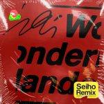 [Single] iri – Wonderland (Seiho Remix) (2019/MP3+FLAC/RAR)