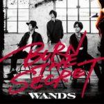 [Album] WANDS – BURN THE SECRET (2020/FLAC/RAR)