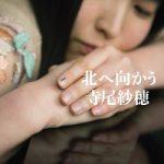 [Album] 寺尾紗穂 (Saho Terao) – 北へ向かう (2020/FLAC + MP3/RAR)