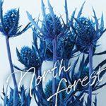 [Single] HY – North Forest (2021/FLAC + MP3/RAR)