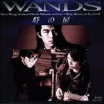 [Album] WANDS – 時の扉 (1993/MP3/RAR)