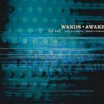 [Album] WANDS – AWAKE (1999/MP3/RAR)