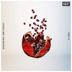 [Single] STEREO DIVE FOUNDATION – OMEGA (2021/MP3 + FLAC/RAR)